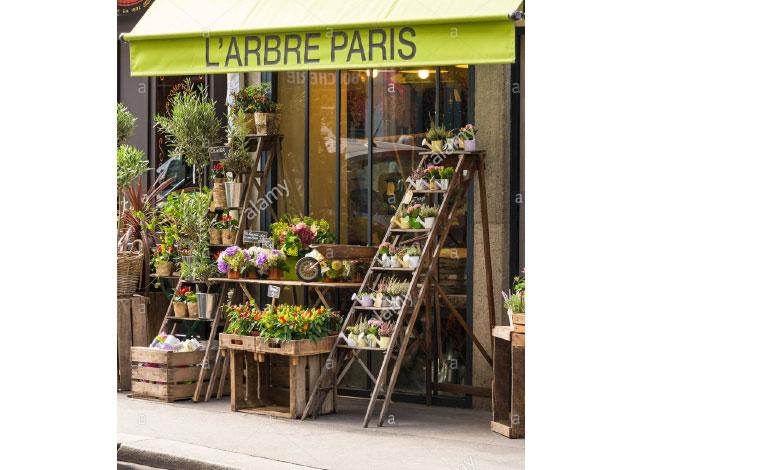 Larbre-paris-fleuriste-nanaki
