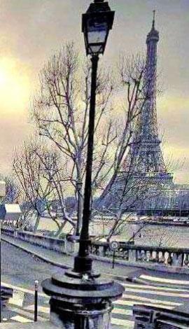 Paris002-nanaki